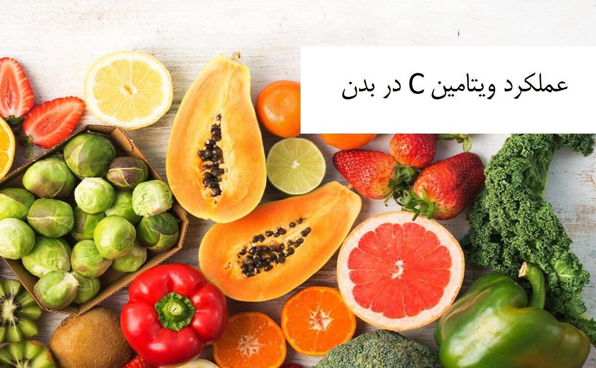 عملکرد ویتامین C در بدن